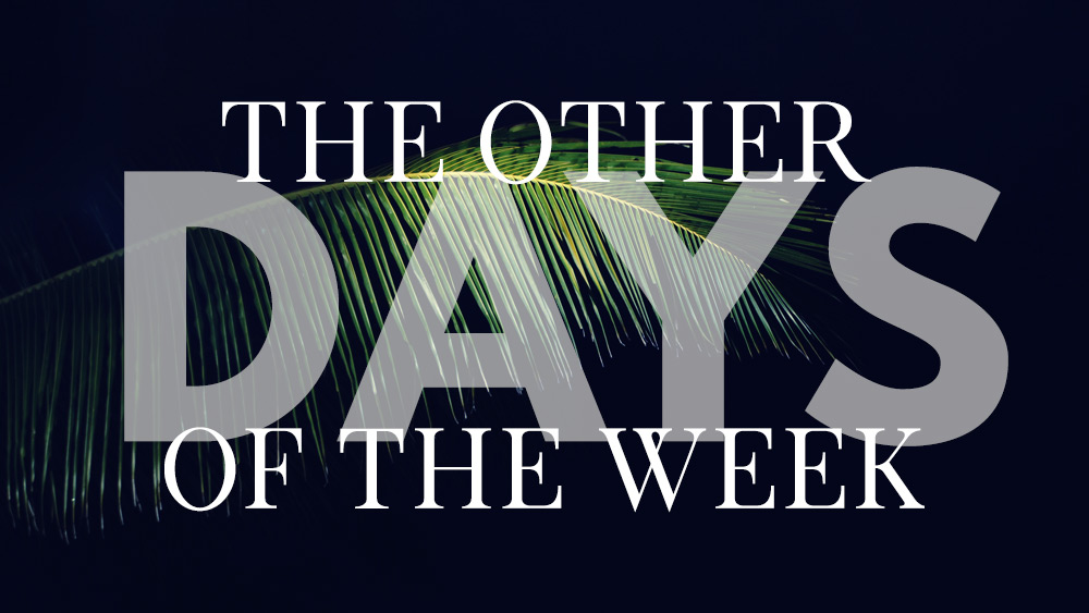 The Other Days of the Week | John 13 Image